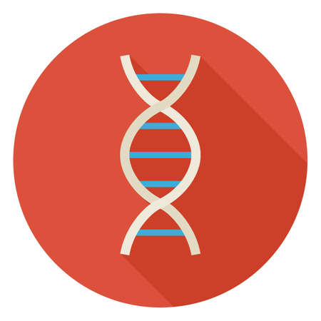 dna strands: Flat Science and Medicine DNA Circle Icon with Long Shadow. Back to School and Education Vector illustration. Colorful Biology Physics and Research Object. Medical Sign