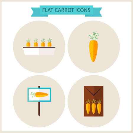 vegetable gardening: Flat Carrot Vegetable Website Icons Set. Vector Illustration. Flat Circle Icons for web. Collection of Nature Gardening Colorful Circle Icons. Agriculture Garden Spring Season Concept. Illustration