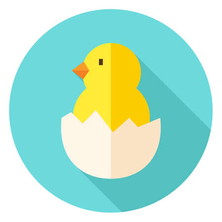 poult: Hatched Chick in Eggshell Circle Icon. Flat Design Vector Illustration with Long Shadow. Animal Bird Symbol. Illustration