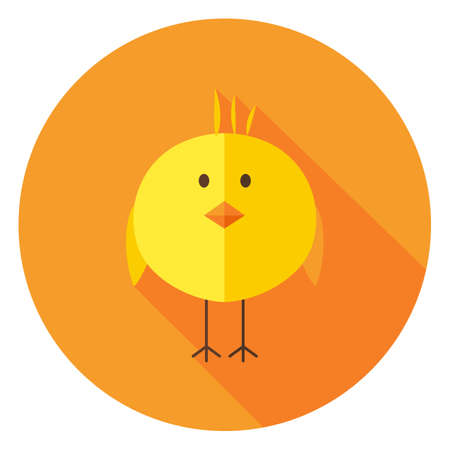 poult: Yellow Chick Circle Icon with long Shadow. Flat Design Vector Illustration with Long Shadow. Animal Bird Symbol.
