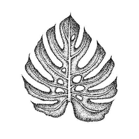 Dotwork Monstera Leaf. Vector Illustration of T-shirt Design. Tattoo Hand Drawn Sketch.