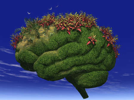 3d render of a brain-looking garden Stock Photo - 629444