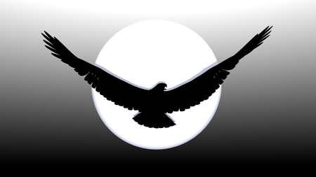 open the wings: impressive silhouette