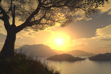 panoramic beach: 3d render of a wonderful sunset with a blooming cherry tree
