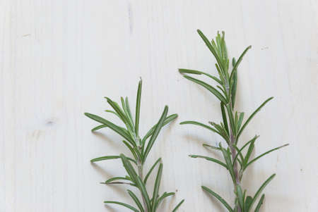 antispasmodic: close-up of rosemary on rustic white table