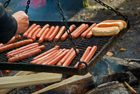 Sausages on the outdoor grill in the forest. photo