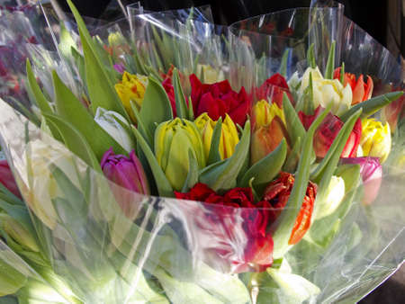 Wrapped bouquets of tulips in various colors for sale. photo