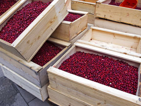 Wooden boxes with lingonberries on the market. photo