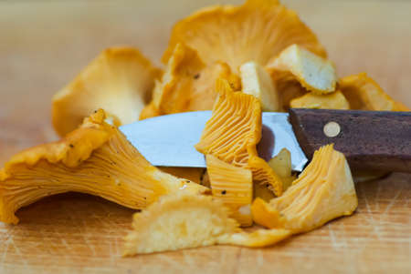 Fresh golden chanterelles on cutting board with knife. Stock Photo - 10024350