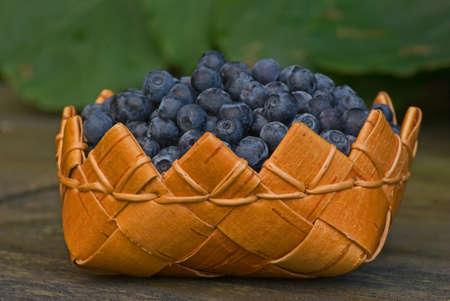 birchbark: Fresh blueberries in a weaved birch-bark basket.