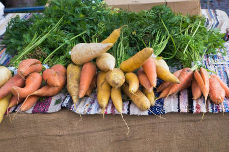 Root vegetables for sale at farmers market  photo