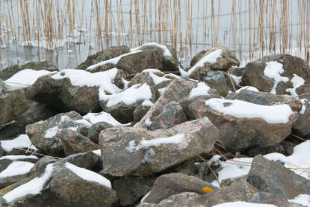 brackish water: Stones with snow and reeds in background at the seashore. Stock Photo