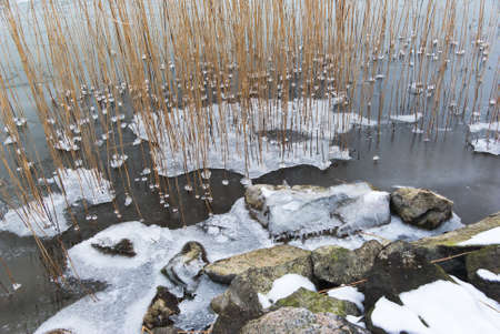 brackish water: Stones and water with ice and snow at the seashore.
