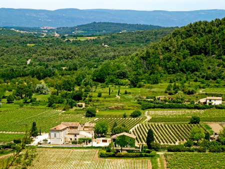 Countryside with vineyards and buildings  photo