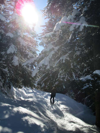 Mountains forest snow walking woman