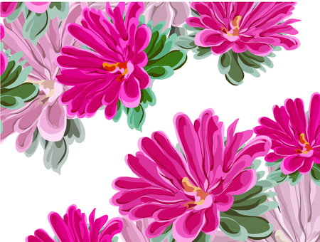 provincial: Asymmetric composition of bright pink and lilac chrysanthemums, flowers and leaves in vector on white background