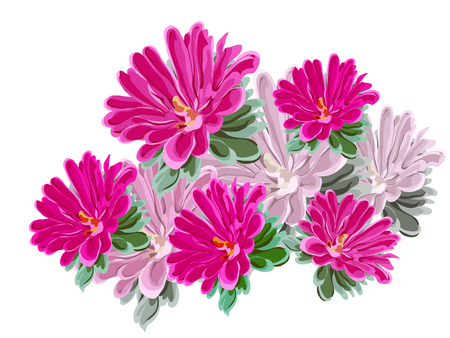 provincial: Composition bouquet of bright pink and lilac chrysanthemums, flowers and leaves in vector on white background Illustration