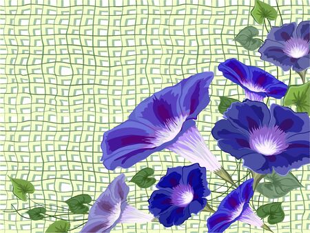 Flowers bells, convolvulus, ivy painted on a sacking net with bright blue petals and green leaves, vecktor asymmetric composition