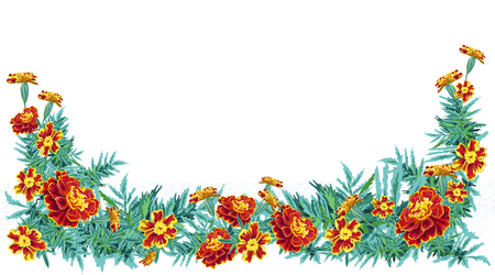 Outline stains naturalistic flowers marigold nasturtium with leaves bright orange with in the form of half a frame.