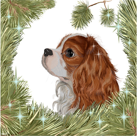 Vector realistic drawing - cute breed of dogs Cavalier King Charles Spaniel, a symbol of the year 2018 of the dog - the head of Ehglish ToySpaniel in a hand-painted romantic frame - a wreath of branches of a Christmas tree, shiny sparkle - the stars