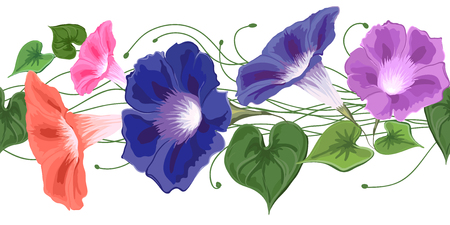 Bouquet climbing wavy bells, convolvulus flowers in blue, pink, purple and green leaves drawn in vector seamless, brush Bindweed