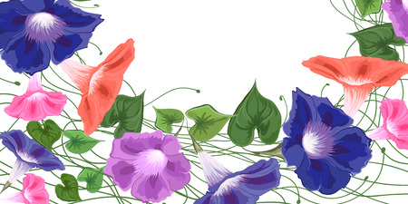 Card with a bouquet of bright colors of convolvulus, leaves and flowers, painted in a vector of blue, pink, green.