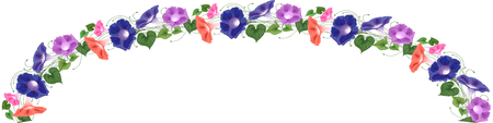 Horizontal banner from an arch adorned with a pattern of interlacing flowers of blue, pink and purple bindweed and green leaves and stems on a white background in vector illustration.