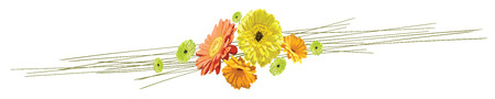 Horizontal banner with a bouquet of flowers brightly drawn gerberas and chamomiles isolated in a vector yellow, orange and green Illustration