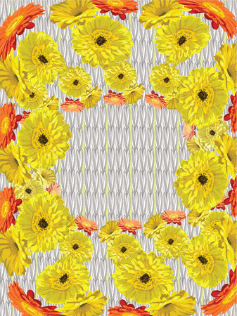 On the background of knitting with the needles, scattered yellow yellow orange gerberas in the form of a wreath