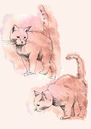 Sketch in sketch lines two figures of crouching wild cats, on the background of watercolor red spots doodle, cat hunter, vector