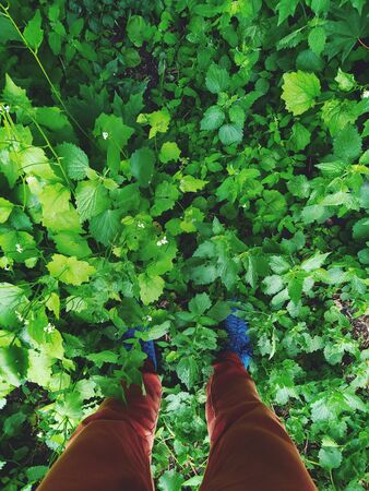 legs in blue boots and brown trousers on leaves and grass green
