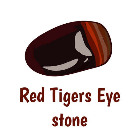 onyx: Red tiger eye stone on white background.  illustration Illustration