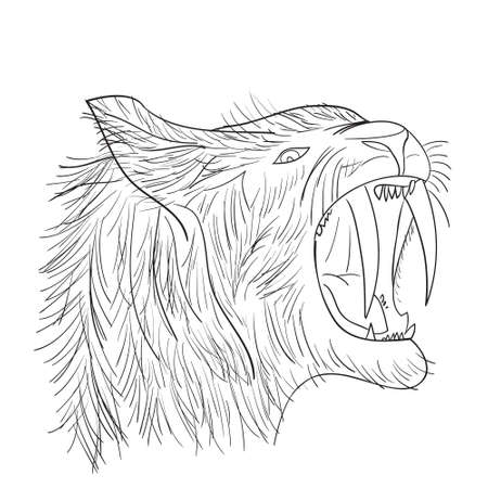 Sabre-tooth cat in doodle style. Perfect for web, blog, textile, prints and other