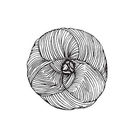 yarn ball - hand drawn illustration. Perfect for logo, print or knitting shop Stock Photo