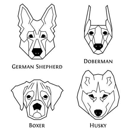 Dogs breeds icon set in geometric modern style. German Shepherd, Doberman, Boxer, Husky. Perfect for logo, print and creative design. Vector illustration. Isolated on white.