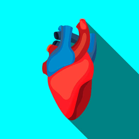 Human heart icon in cartoon style. For medicine, education and school posters Illustration