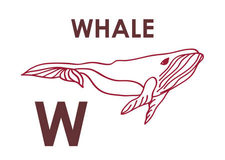 Letter W with whale in outline style. Vector illustration. For print, coloring book, preschool and kids activity design. Çizim