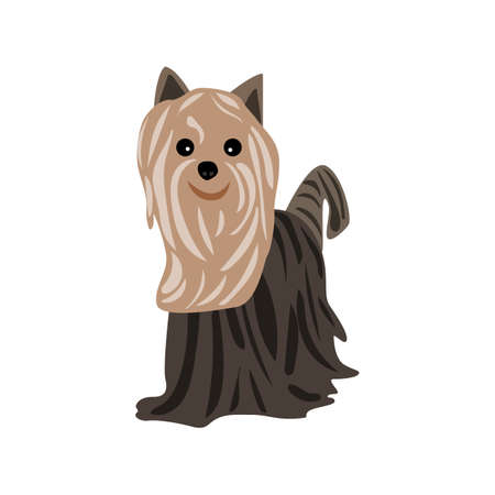 Yorkshire Terrier icon in carton style. Vector illustration.