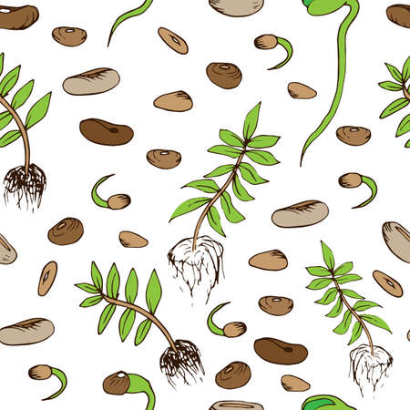 Beans seamless pattern in hand drawn style. Vector illustration