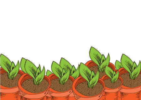 Flower pot with aloe vera banner in hand drawn style. Vector illustration.