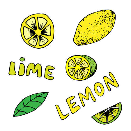 Lemon and lime icons set in hand drawn style. Vector illustration