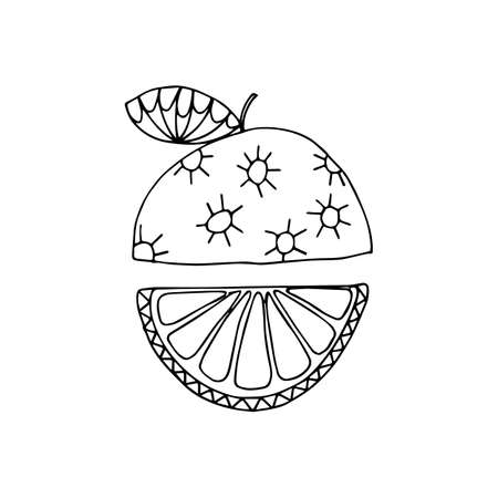 Orange  fruit icon in hand drawn style. Vector illustration. Perfect for print, kitchen, textile
