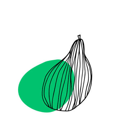 Pear fruit icon in hand drawn style. Vector illustration. Perfect for print, kitchen, textile
