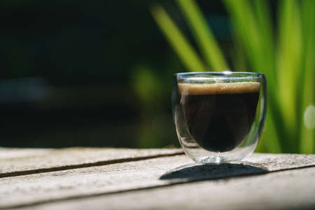 Small transparent double wall glass cup of fresh brewed coffee placed on a natural wooden surface in front of a plant filled pond