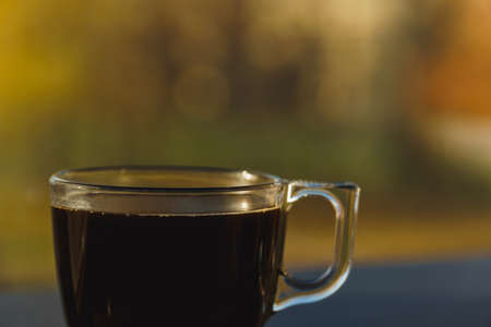 Cropped close shot of small transparent cup of black coffee. On blurred autumn trees background. Warm tones.