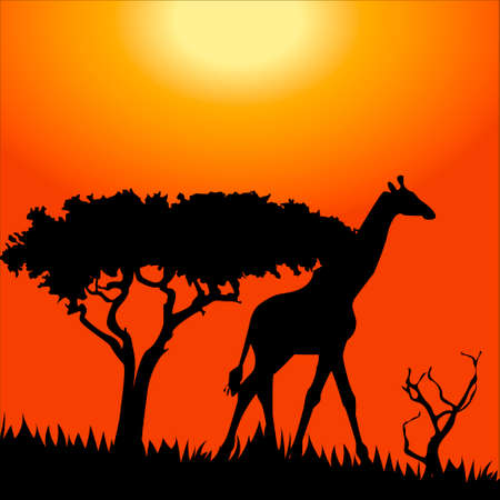 Africa safari - silhouettes of wild animals Illustration
