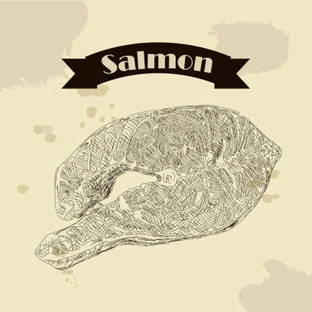 cooked meat: Salmon fillet hand drawn vector illustration. Engraved style vintage seafood. Great for Fish and sea food restaurant menu, flyer, card, business promote. Illustration