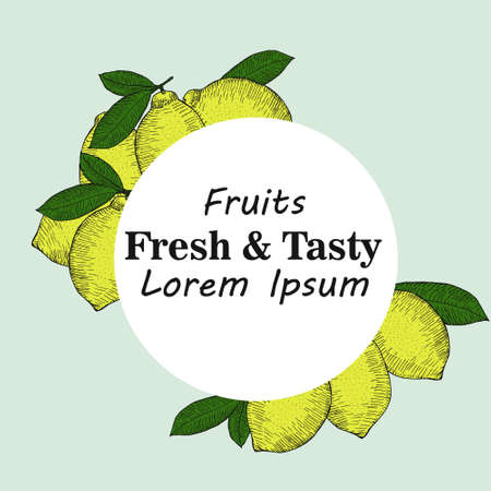Vector drawing of lemon fruit with space for text