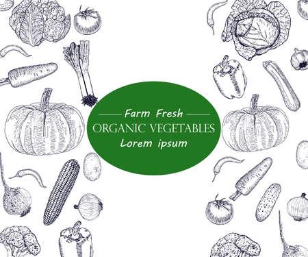 Vegetables hand drawn vintage vector illustration  set