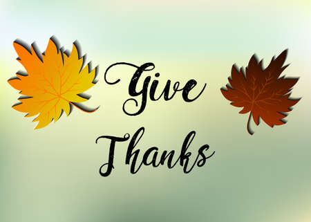 Leaves of Thanks given design vector illustration autumn